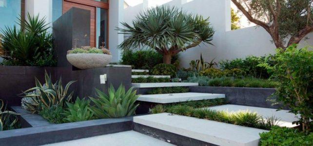 Comment végétaliser un escalier ?